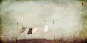 Line Dance by jamie heiden,